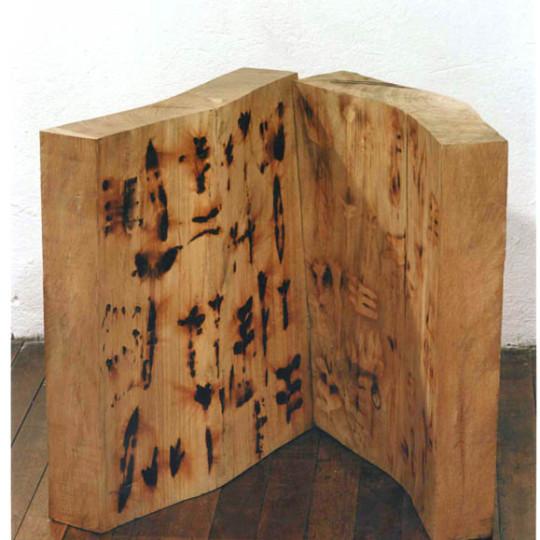 Madera impresa con fuego 49x40x47 cm