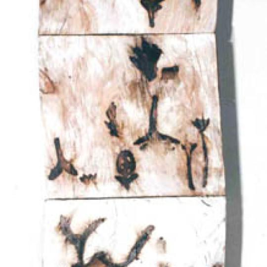 Madera impresa con fuego y caseina 223x98x10 cm