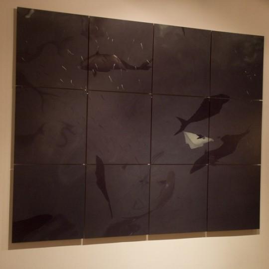 200 x 150 cm